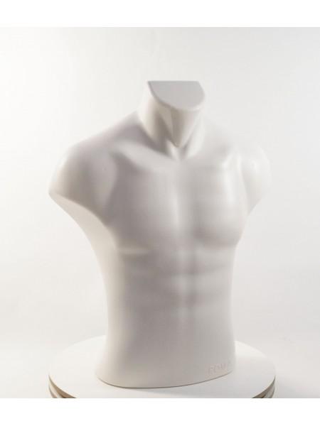 Манекен мужской торс Рома-2 белый матовый