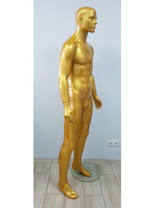 Манекен мужской K15-8 gold